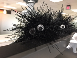 Little black fuzzy things with googly eyes.